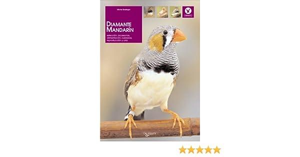 Diamante mandarín (Animales): Amazon.es: Michel Dr. Bolzinguer: Libros