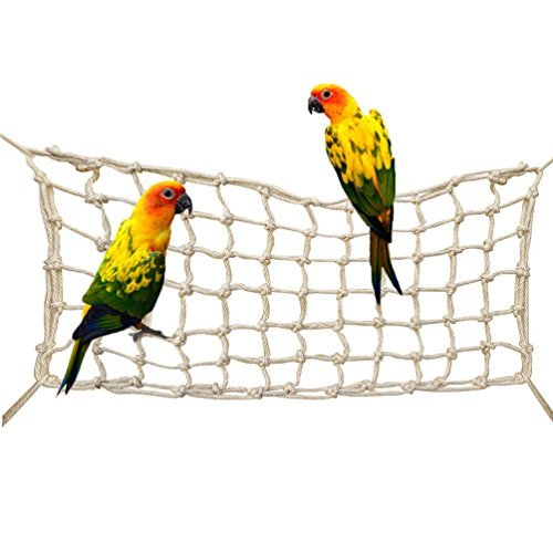 How To Build Your Own Bird Play Gym Spiffy Pet Products