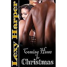 Coming Home for Christmas (MFM Erotic Romance) (English Edition)