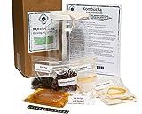 Kitchen & Housewares : DB Mercantile Kombucha Brewing Starter Kit