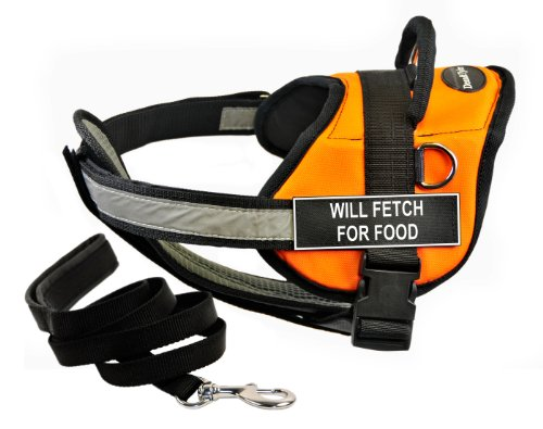 Dean & Tyler's DT Works Orange ''WILL FETCH FOR FOOD'' Harness with Chest Padding, Medium, and Black 6 ft Padded Puppy Leash. by Dean & Tyler