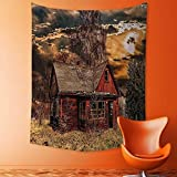 aolankaili Tapestry Wall Hanging Mysterious Tapestry Scary Horror Movie Themed Abandoned House in Pale Grass Garden Sunset Photo Multicolor Tapestry Art for Home Decor