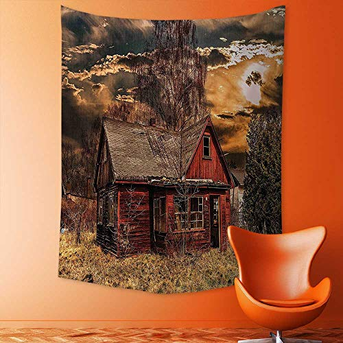 aolankaili Tapestry Wall Hanging Mysterious Tapestry Scary Horror Movie Themed Abandoned House in Pale Grass Garden Sunset Photo Multicolor Tapestry Art for Home Decor by aolankaili