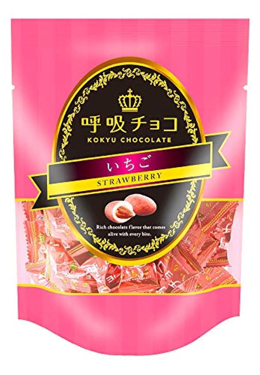 [해외] 호흡초코 스탠드팩 딸기 (73gx3봉지)