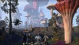 The Elder Scrolls Online: Morrowind - PC Collectors Edition