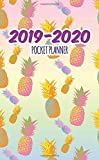 2019-2020 Pocket Planner: Two Year Monthly Organizer