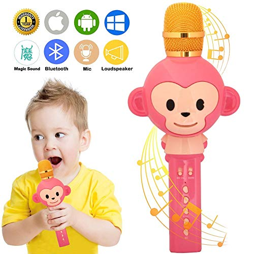 Gaobige Microphone for Kids