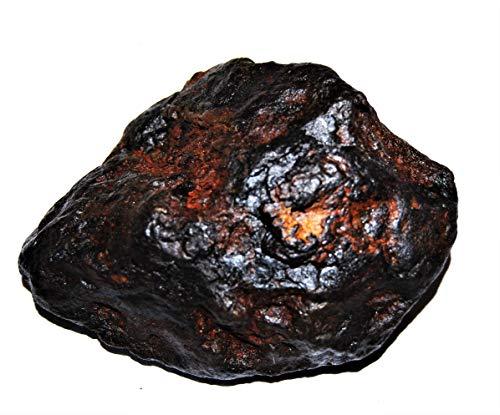 Fossil, Meteorites, & More NANTAN Iron Nickel Meteorite -Genuine-691.7 Grams+ Card & COA# 14359 27o by Fossil, Meteorites, & More (Image #2)