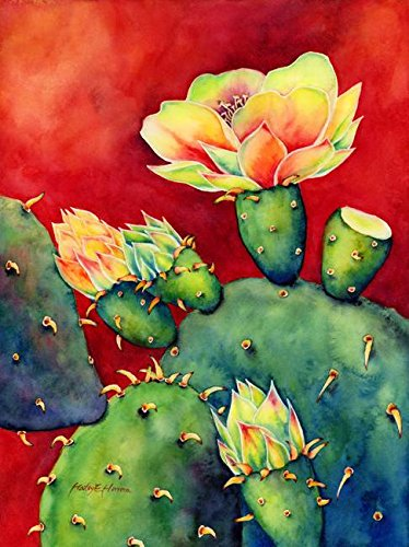 Imagekind Wall Art Print entitled Desert Bloom by Hailey E. Herrera