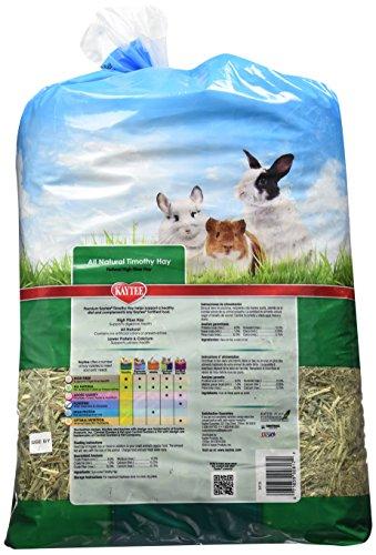 Kaytee-Timothy-Hay-96-oz-bag