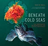 Front cover for the book Beneath Cold Seas: The Underwater Wilderness of the Pacific Northwest by David Hall