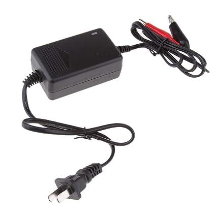 Almencla Cargador de Batería Compacto 6V 2A Accesoruio para ...
