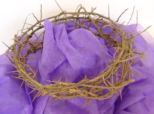 Crown Of Thorns: Life Size Authentic Crown 1112 in diameter by zytoon