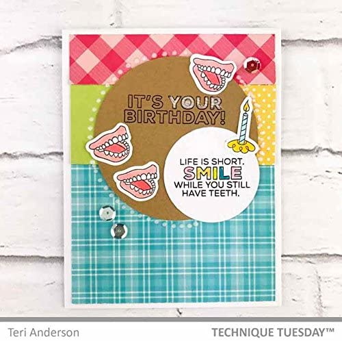 Card Sentiment Rubber Stamps Sassy Birthday 2.0 Clear Stamps Photopolymer Stamps Funny Birthday Saying Stamps Card Making Supplies