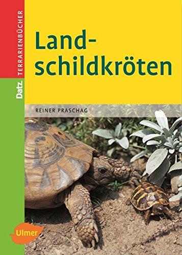 Landschildkröten (Datz Terrarienbücher)
