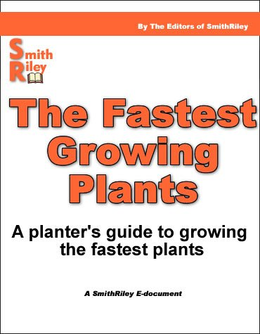 The Fastest Growing Plants - A Planter's guide to planting the fastest growing plants