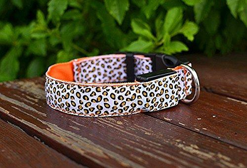 LED Halsband in verschiedenen Farben und Größen - Wasserdichte Halsbänder LED-Blinklicht-Band-Gurt für Haustiere Hunde und Katzen - Direktversand aus Deutschland von ETU24® (Orange, 40 Zentimeter)