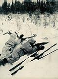 Battles for Scandinavia, John Robert Elting, 0809433966