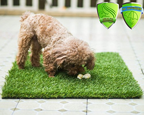 MTBRO Artificial Grass for Pet Potty Training and Replacement Puppy Grass Mat,Perfect Grass Doormat for Pets Clean Paws and for Pets Bathing,Blade Height 1.5