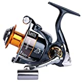 Goture New GT4000 Metal Spinning Fishing Reels Saltwater Carp Reels 11BB Carp Fishing Wheel Spinning Reel CNN Handle