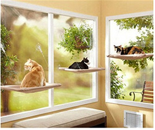 Prettysell Cat Perch Window-mounted Cat Bed Cat Sunny Seat Pet Bed & Lounge Cat Hammock