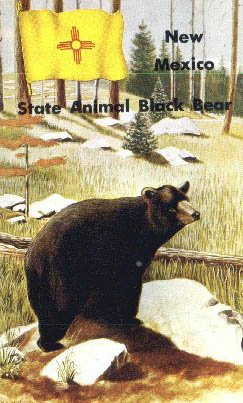 State Animal, New Mexico Postcard from Old Postcards