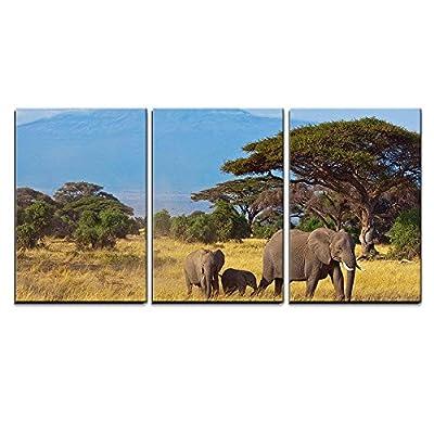 Elephant Family in Front of Kilimanjaro x3 Panels...