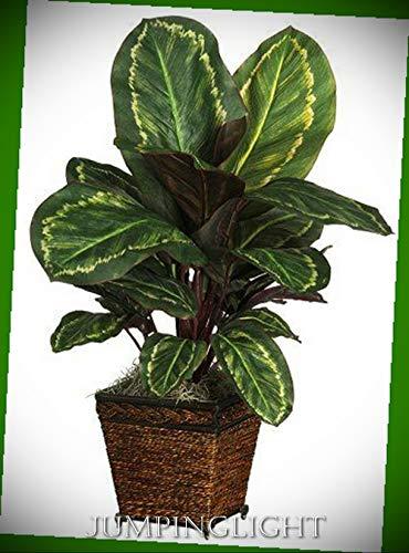 JumpingLight Maranta with Basket Silk Plant Artificial Flowers Wedding Party Centerpieces Arrangements Bouquets Supplies