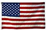 Cheap 8′ x 12′ American Flag – TearGuard (Polyester II)