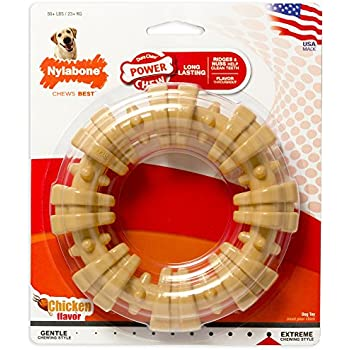 Nylabone DuraChew Ring Dog Toy