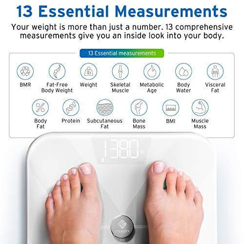 Fat Scale, BMI Scale with and ITO Conductive Glass, FDA Body Composition Analyzer