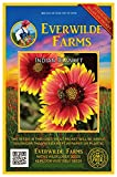 Everwilde Farms - 500 Indian Blanket Native Wildflower Seeds - Gold Vault Jumbo Seed Packet