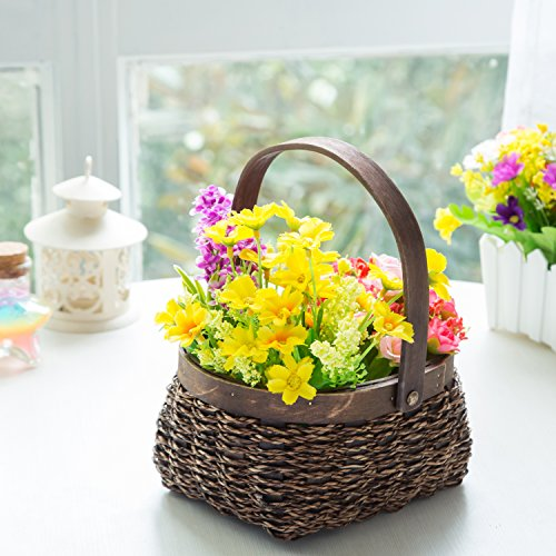 Mini Decorative Woven Display Basket with Wood Trim and Carrying Handle, Dark Brown (Small Wood Fruit Basket compare prices)