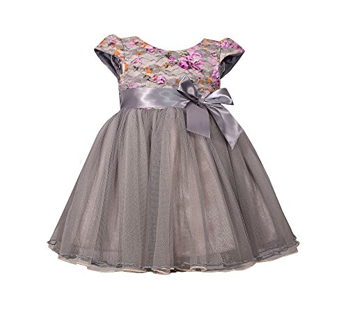 Sweet Heart Rose Baby Girls' Floral Bonded Lace Dress 18 Months