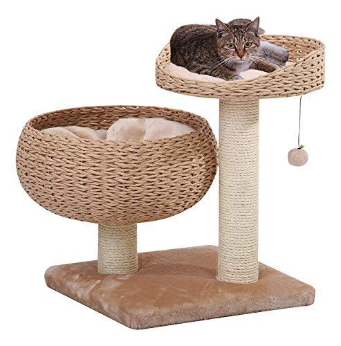 atural Bowl Shaped with Perch Cat Tree ()