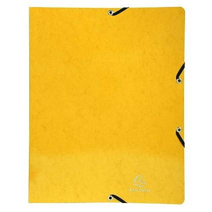 Exacompta 51899E - Carpeta (Conventional file folder, Caja de ...