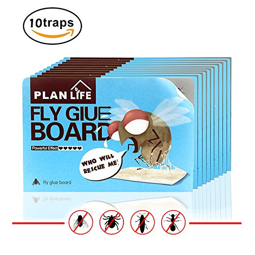 homar-10-pcs-fly-trap-best-in-pest-control-products-double-sided-insects-sticky-traps-glue-boards-us