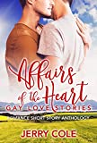 Affairs of the Heart: Gay Love Stories (Romance Short Story Anthology Book 3)