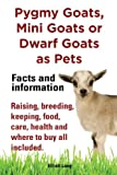 Pygmy Goats as Pets. Pygmy Goats, Mini Goats or Dwarf Goats: facts and information. Raising, breeding, keeping, food, care, health and where to buy all included.
