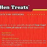 Happy Hen Treats Mealworm Frenzy, 30-Ounce