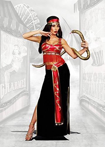 Women's Belly Dancer Halloween Costumes (Dreamgirl Women's The Snake Charmer Belly Dancer Costume, Multi, Small)