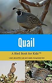 Quail: A Bird Book for Kids