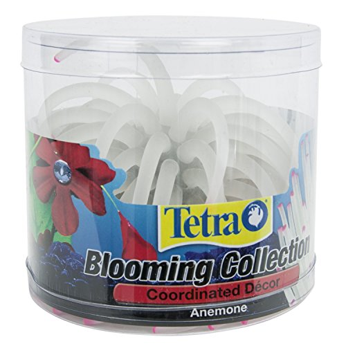 Tetra-ColorFusion-Lighted-Dcor-Blooming-Anemone-for-Aquariums