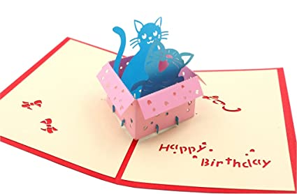 IShareCards Handmade 3D Pop Up Childrens Birthday Cards Box Cats Happy