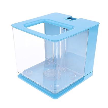 Homyl Acuario Complimentos de Decoración Filtra Atomáticamente Función de Circulación Agua - Azul