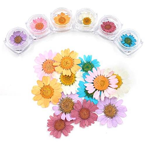 MEILINDS Natural Real Dried Sunflower Nail Art Tips 3D Manicure Sticker Decals Design Decoration 6 Color
