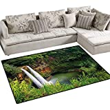 Landscape,Carpet,Majestic Twin Wailua Waterfalls Kauai Hawai Greenery Forest Grass Nature Scenic View,Rug Kid Carpet,Green,48''x70''