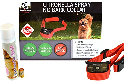 Citronella Anti bark Downtown Pet Supply