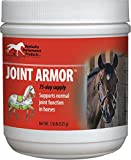 DPD JOINT ARMOR HEALTHY JOINT SUPPLEMENT FOR HORSES - 1 POUND