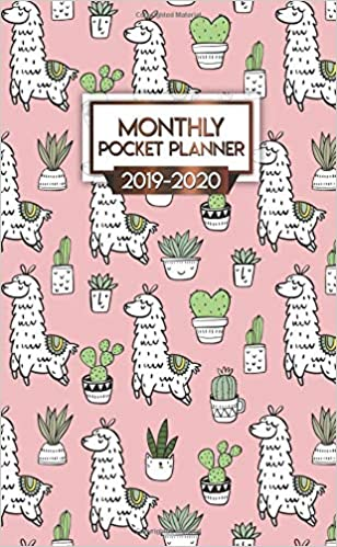 2019-2020 Monthly Pocket Planner: Nifty Cactus Chill Lama ...